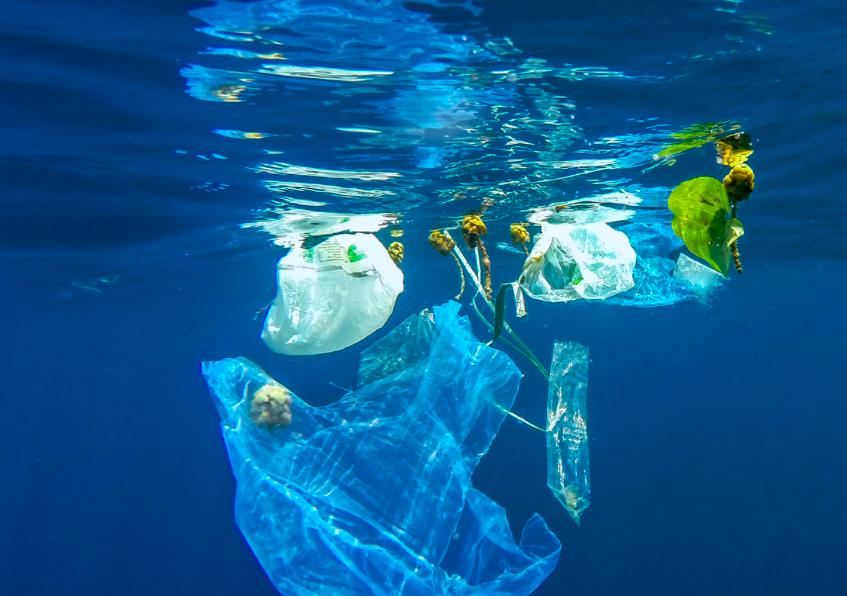 MELTEMI:  Εργαστήριο σχεδιασμού δράσεων ενάντια στα θαλάσσια απορρίμματα